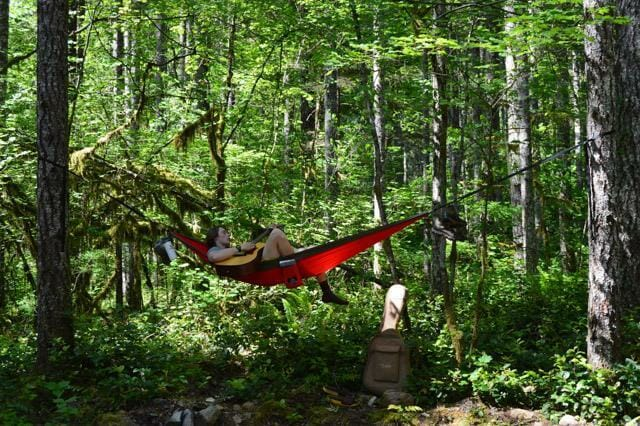Indian Paintbrush Madera Hammocks Chill In The Outdoors